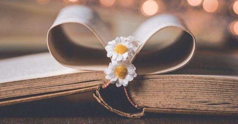 Livre avec pages en coeur et pâquerettes