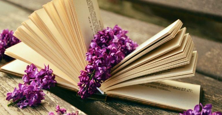Livre ouvert avec lilas