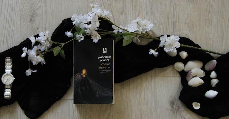 Livre, montre, fleurs, coquillages et écharpe