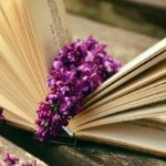 5 romans jeunesse/YA qui plairont aussi aux adultes