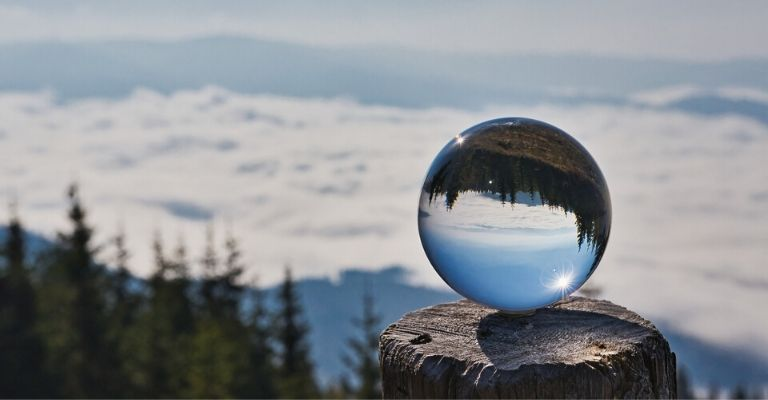Paysage de sapins dans une boule de verre